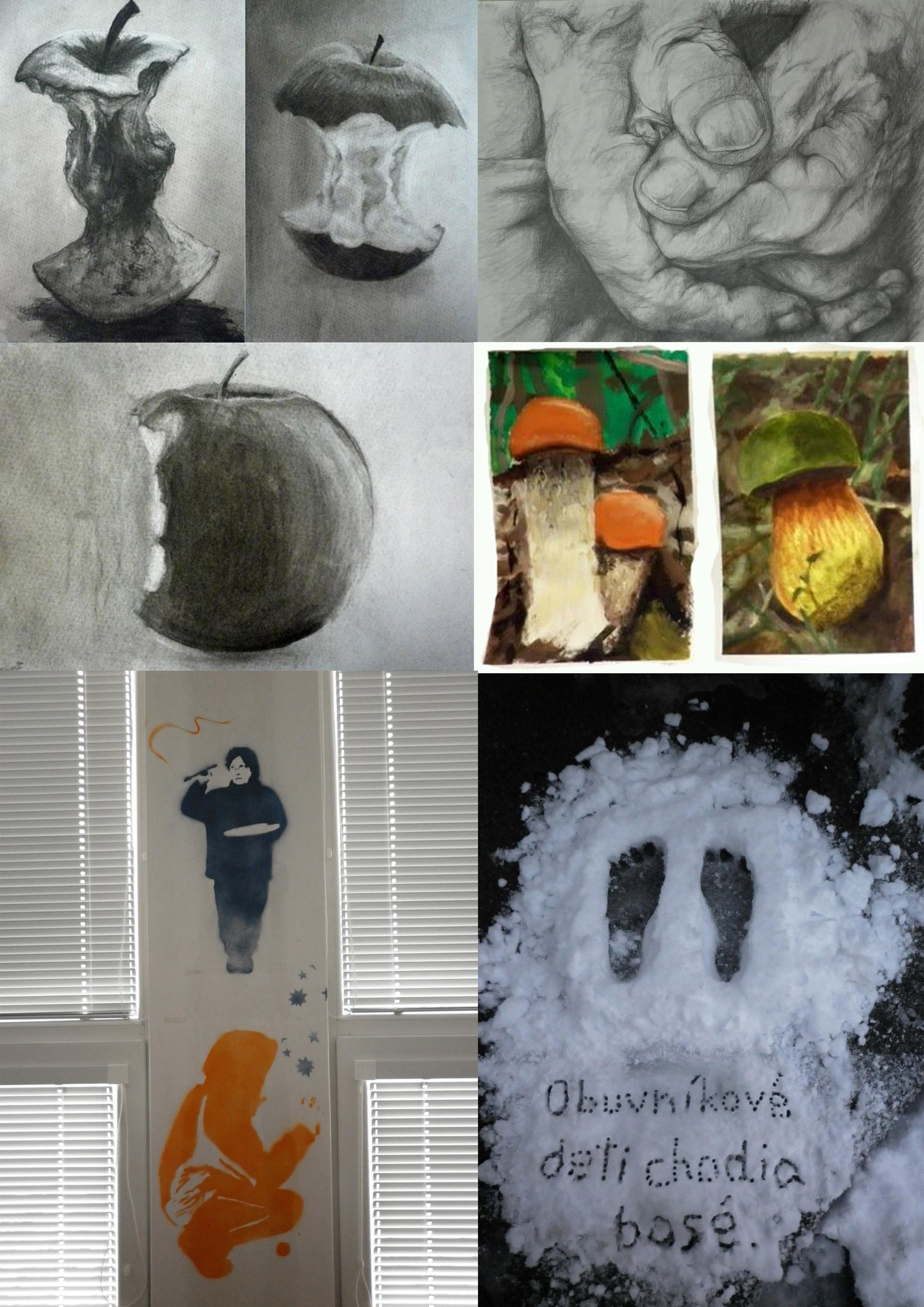 Základná umelecká škola pripravuje žiakov na štúdium učebných a študijných  odborov na stredných a vysokých školách umeleckého zamerania. b7acae5fa6a